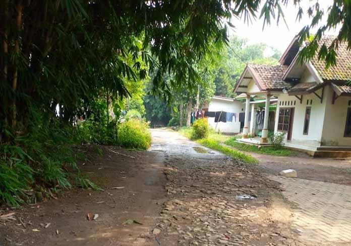 Memperihatinkan! Jalan Kali Wungu Rusak Parah, 22 Tahun Belum Tersentuh Pembangunan
